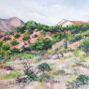 Desert Viewpoint