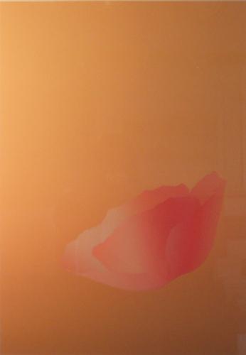 FleurRose II